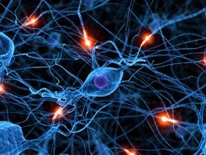 Chronische Schmerzen - Nervensystem